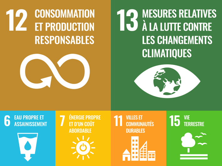 This approach is aligned with the following SDGs