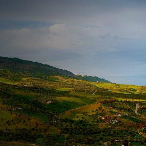 OCP_Morocco_TIle