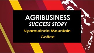 Agribusiness Success Story