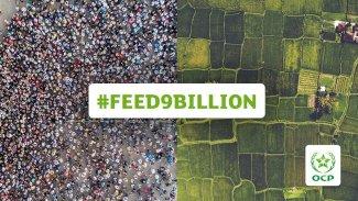 feed9billion