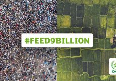 feed9billion